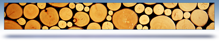 list services graphic header - different size wood logs